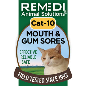 Mouth and Gum Sore Relief Cat Spritz