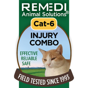 Injury Combo Cat Spritz